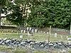 Cosman Family Cemetery