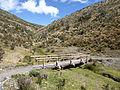 Cotopaxi Nationalpark Ecuador121.JPG
