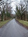 Country Lane - geograph.org.uk - 335805.jpg