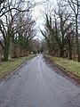 Country Lane - geograph.org.uk - 335805.jpg