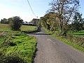 Crevenagh Road, Donaghanie - geograph.org.uk - 1541655.jpg