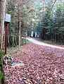 Crngrob Slovenia - Crngrob 1 Mass Grave.JPG