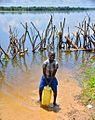 Crocodile Barrier, Uganda (15057506379).jpg