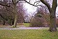 Crocus, Kew Gardens, Surrey - geograph.org.uk - 1186210.jpg