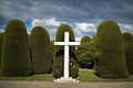 Cross and Bushes in Cemetery of Punta Arenas.jpg