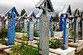 Cruci din Cimitirul Vesel.jpg