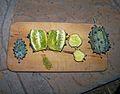 Cucumis metuliferus, d, Pietersburg.jpg