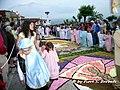 Cusano Mutri (BN), 2007, Infiorata, la processione pomeridiana. - Flickr - Fiore S. Barbato.jpg