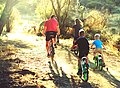 Cyclist family Elisenheim.jpg