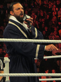 Damien Sandow Feb 2013.jpg