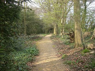 "Darwin's ""sandwalk"" at Down House was his usual ""Thinking Path"". Darwins Thinking Path.JPG"