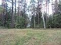 Degučiai, Lithuania - panoramio (21).jpg