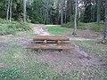 Degučiai, Lithuania - panoramio (22).jpg