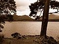 Derwent Water - geograph.org.uk - 1267114.jpg