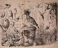 Die Praxis der Naturgeschichte - ein vollständiges Lehrbuch über das Sammeln lebender und todter Naturkörper; deren Beobachtung, Erhaltung und Pflege im freien und gefangenen Zustand; Konservation, (20915468316).jpg