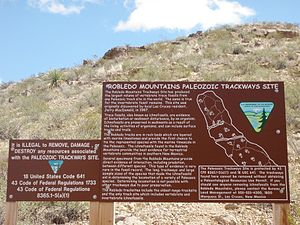 Prehistoric Trackways National Monument - BLM sign at the discovery site