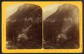 Dismal Pool & R.R., White Mtn. Notch, by G. H. Aldrich & Co..png