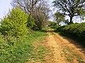 Ditchedge Lane - geograph.org.uk - 449206.jpg