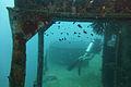 Diving Ko Tao, Thailand 1143.jpg