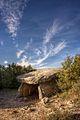 Dolmen dans le bois du Laoul..jpg