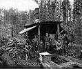 Donkey engine and crew, Vance Lumber Company, near Malone, ca 1916 (KINSEY 1333).jpeg
