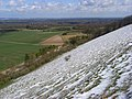 Downland, East Woodhay - geograph.org.uk - 763915.jpg