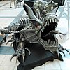 Dragon pet - Flickr - Stiller Beobachter.jpg