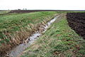 Drain and Fields, Chatteris Fen - geograph.org.uk - 723784.jpg