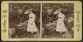 Drinking fountain on Ambergill, from Robert N. Dennis collection of stereoscopic views 2.png