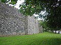 Dublin City Walls - geograph.org.uk - 543088.jpg