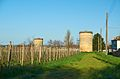 Due vecchi silos - panoramio.jpg