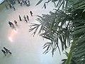 EA - panoramio (2).jpg