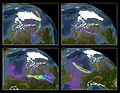 Earth's x-ray aurora borealis 2004 composite.jpg