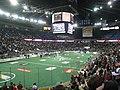 Edmonton Rush versus Toronto Rock February 2010.jpg