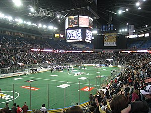 Edmonton Rush - An Edmonton Rush game in Rexall Place