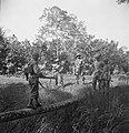Een militair loopt over een boomstam richting andere soldaten die al aan de ove…, Bestanddeelnr 15820.jpg