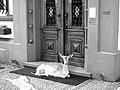 Eingangsportal Villa Haas (Sinn) mit Damhirsch.jpg