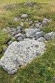 Ekornavallen (Raä-nr Hornborga 29-1) gånggrift skålgropar 2554.jpg