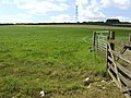 Electrified grazing land - geograph.org.uk - 492542.jpg
