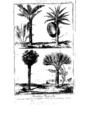 Encyclopedie volume 5-155.png