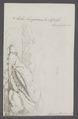 Eolis longicauda - - Print - Iconographia Zoologica - Special Collections University of Amsterdam - UBAINV0274 091 13 0005.tif