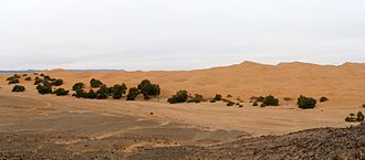 Erg Chebbi - Panorama showing the transition of flat desert to dunes