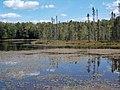 Erickson Lake - panoramio.jpg