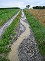 Erosion Off-site Wege018.JPG