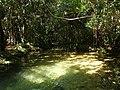Escocamento da piscina nova - riacho.jpg