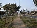 Esquina Av Trapiche con Av. Sangarara - Comas Lima Norte - panoramio.jpg
