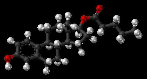 Quieres saber más Metabolismo basale