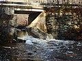 Etna Pond Fishway (15323384484).jpg