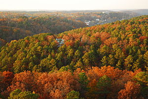 Eureka Springs, Arkansas - View of Eureka Springs from atop an observation tower; the Crescent Hotel is visible on the horizon (2008)