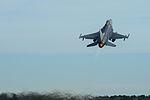 F-16 Fighting Falcon 150206-Z-WT236-089.jpg